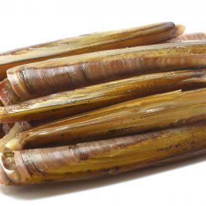 Compra navaja fresca de las rias gallegas